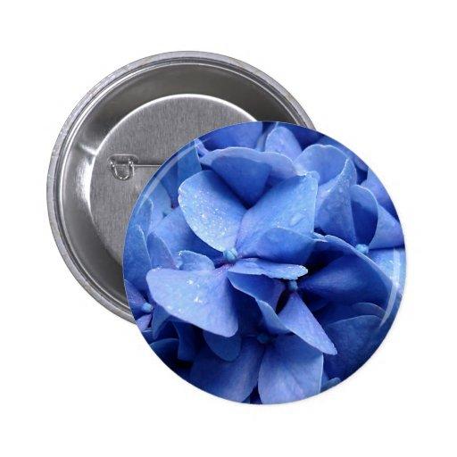 Botão/crachá azuis do Hydrangea Boton