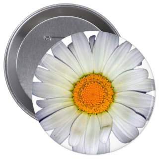 Botão da foto da margarida bóton redondo 10.16cm