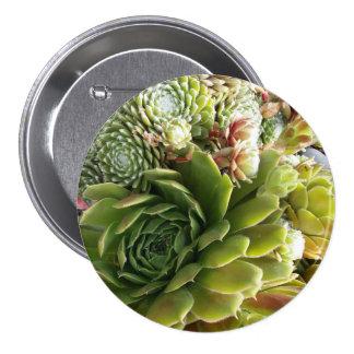 Botão da foto do Succulent Bóton Redondo 7.62cm