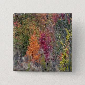 Botão da paleta do outono bóton quadrado 5.08cm