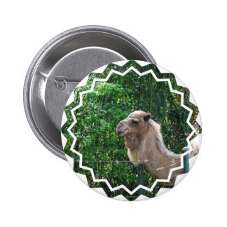 Botão do design da foto do camelo bóton redondo 5.08cm