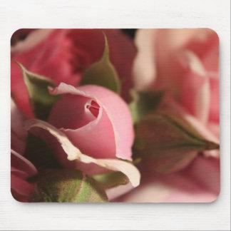 Botão do rosa do rosa mouse pad