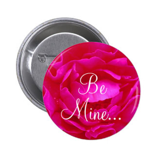 Botão do rosa II do rosa Boton