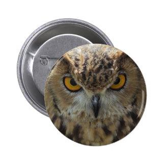 Botão redondo da foto da coruja bóton redondo 5.08cm