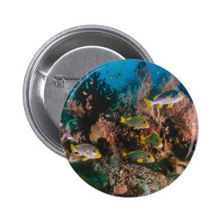 Botões do recife de corais bóton redondo 5.08cm