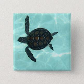 Bóton Quadrado 5.08cm Tartaruga de mar do bebê