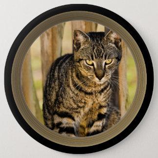 Bóton Redondo 15.24cm Retrato do gato da concha de tartaruga, foto do