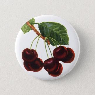 Bóton Redondo 5.08cm Alimentos da fruta do vintage, cerejas maduras de