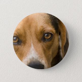 Bóton Redondo 5.08cm Cão de caça leal do cão do lebreiro