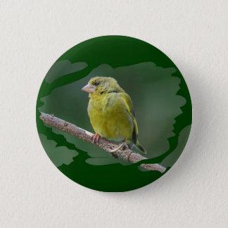 Bóton Redondo 5.08cm Green Finch - tentilhão de verde Verdier