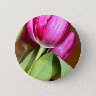 Bóton Redondo 5.08cm Ponta do pé através das tulipas