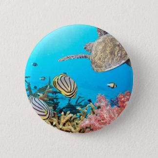 Bóton Redondo 5.08cm Tartaruga Naturescape do recife de corais