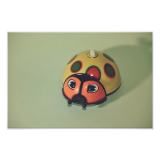 Brinquedo do joaninha fotografia