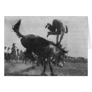 Bronco Bucking Cartão Comemorativo