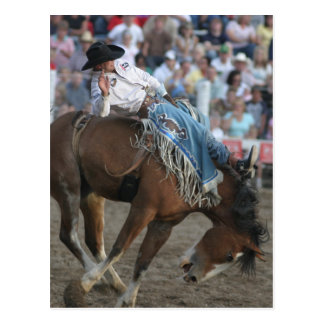 Bronco Bucking do rodeio Cartão Postal