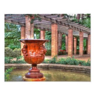 Bronze Impressão De Foto