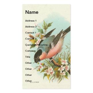 Bullfinch do vintage modelos cartão de visita