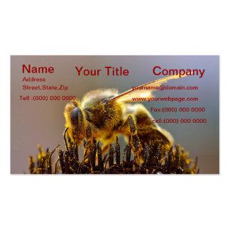 Bumble o cartão de visita da abelha