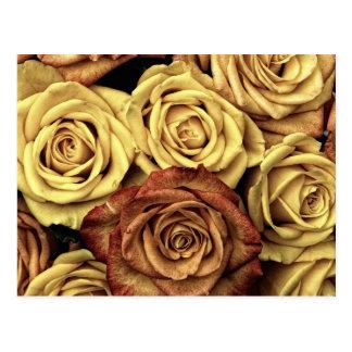 Buquê floral desvanecido bonito do vintage dos cartão postal