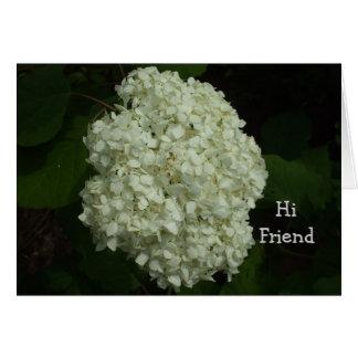 Bush-Amigos do Snowball justos porque dia Cartão