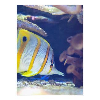 Butterflyfish de Copperband Convite