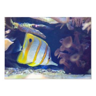 Butterflyfish de Copperband Convites