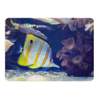 Butterflyfish de Copperband Convite Personalizado