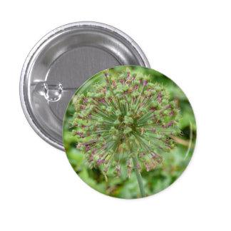 Button alho-poró de ornato bóton redondo 2.54cm
