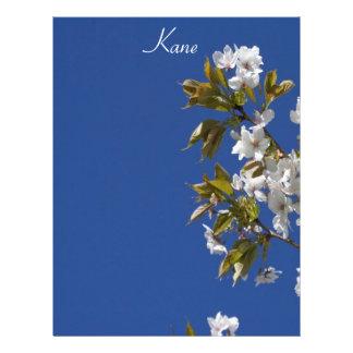 Cabeçalho da flor de Kane Modelo De Papel De Carta