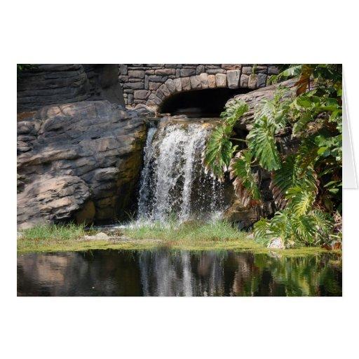 Cachoeira Cartão
