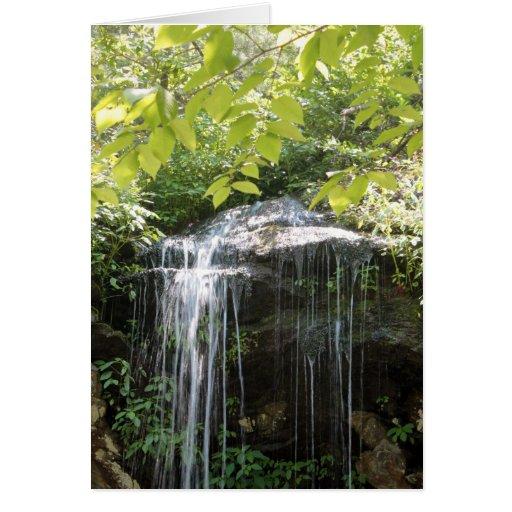 cachoeira cartoes