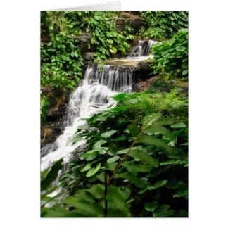 Cachoeira Cartão Comemorativo
