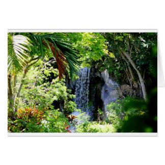 Cachoeira de Bahamas Cartão Comemorativo