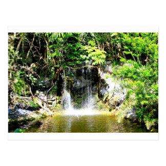 Cachoeira de Sunreflected Cartão Postal