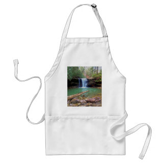 Cachoeira do Appalachian da região selvagem Avental