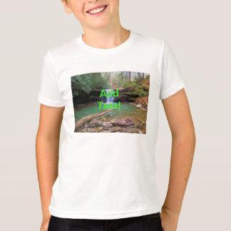 Cachoeira do Appalachian da região selvagem Camisetas
