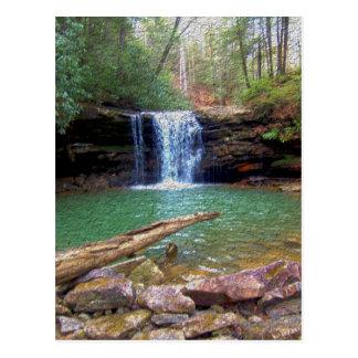 Cachoeira do Appalachian da região selvagem Cartão Postal