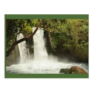cachoeira e cartão verdes das árvores cartão postal