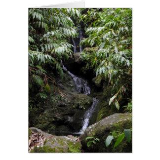 Cachoeira havaiana secreta cartão comemorativo
