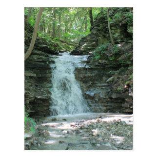 Cachoeira nas madeiras cartão postal
