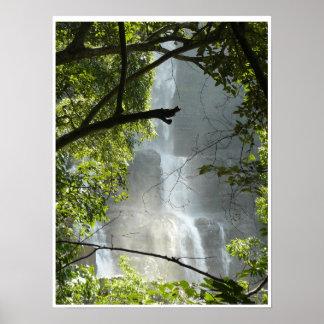 Cachoeira Pôster