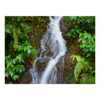 Cachoeira Posters