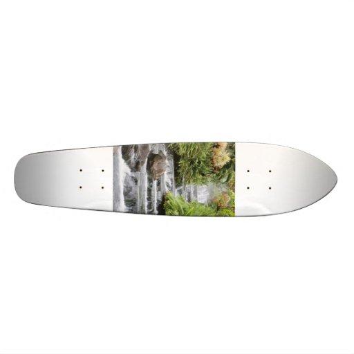 Cachoeira Skates Personalizados