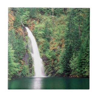 Cachoeira Willamette Azulejos De Cerâmica