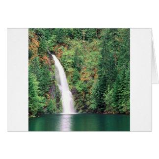 Cachoeira Willamette Cartões