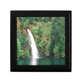Cachoeira Willamette Caixa De Persentes