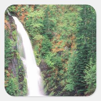 Cachoeira Willamette Adesivo Quadrado