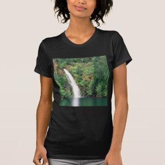 Cachoeira Willamette Tshirts