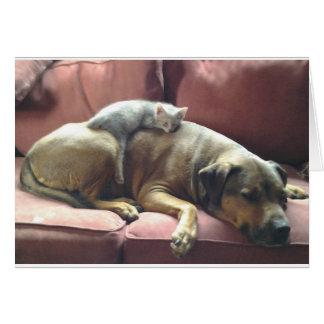 Cachorrinho e cartão de Kittie