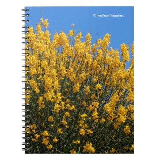 Caderno Espiral Índigo falso amarelo/índigo selvagem/Horseflyweed